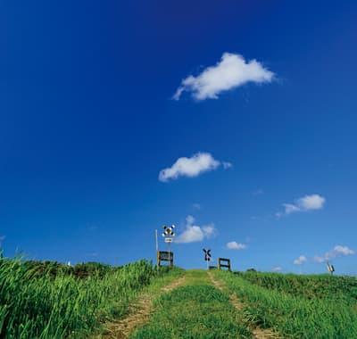 雲が浮かぶ青空と踏切だけ。これぞ 鉄道が持つゆる~い雰囲気や旅情を 被写体にした「ゆる鉄写真」なのです いすみ鉄道(千葉県)❘ No.520 表紙