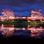 水鏡に桜と列車が映る幻想的な春の夜(飯給〈いたぶ〉駅)